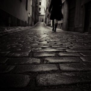 """On The Wet Cobblestones."" Mikael Raymond; Gnesta, Sweden"